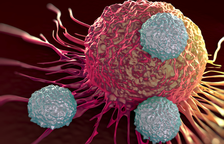 Immuno-oncology research at Immatics
